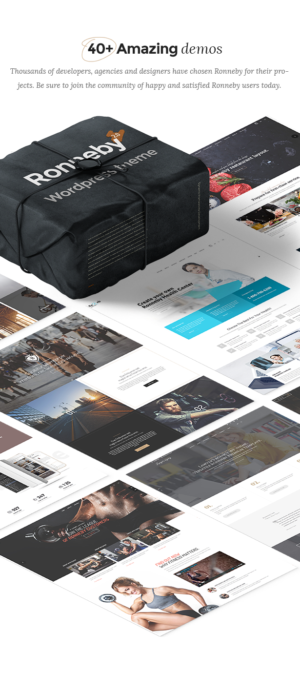 Ronneby - High-Performance WordPress Theme - 3