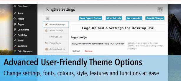 Advanced User-Friendly Theme Options