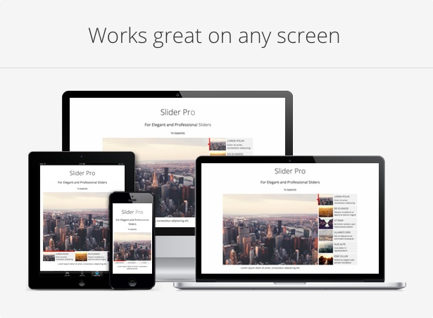 Slider Pro - Responsive WordPress Slider Plugin - 2