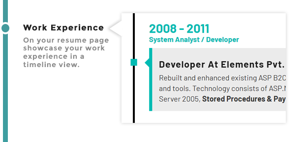 Work Experience Timeline