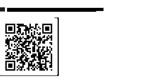 SocialFans - WP Responsive Social Counter Plugin - 4