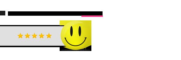SocialFans - WP Responsive Social Counter Plugin - 5
