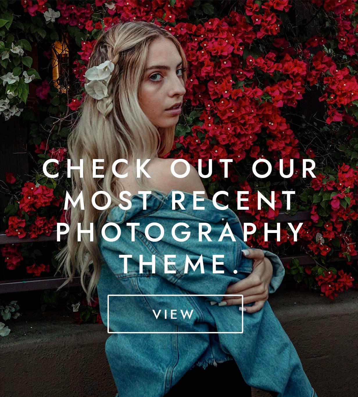 Photo Nexus WordPress gallery 2 in 1 - 1