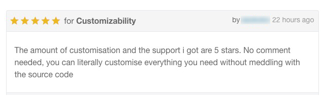 Customizability and 5 Star Support Services by PlethoraThemes