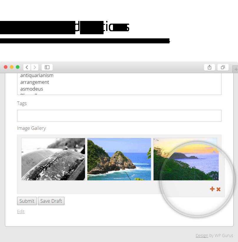 Frontend Publishing Pro - WordPress User Submission Plugin - 15
