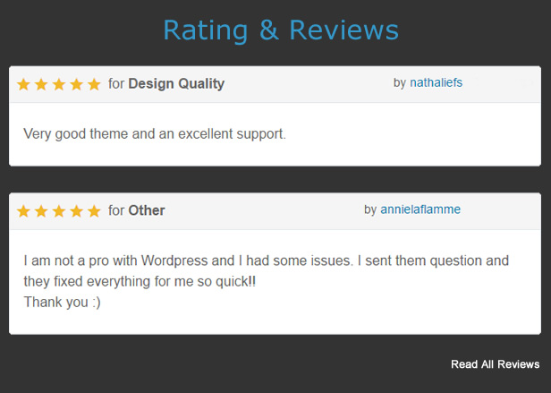 Premium WordPress Themes - Review