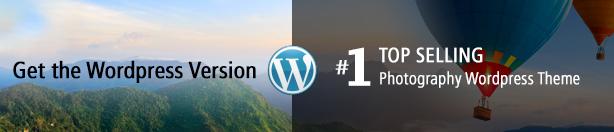Get the WordPress Version