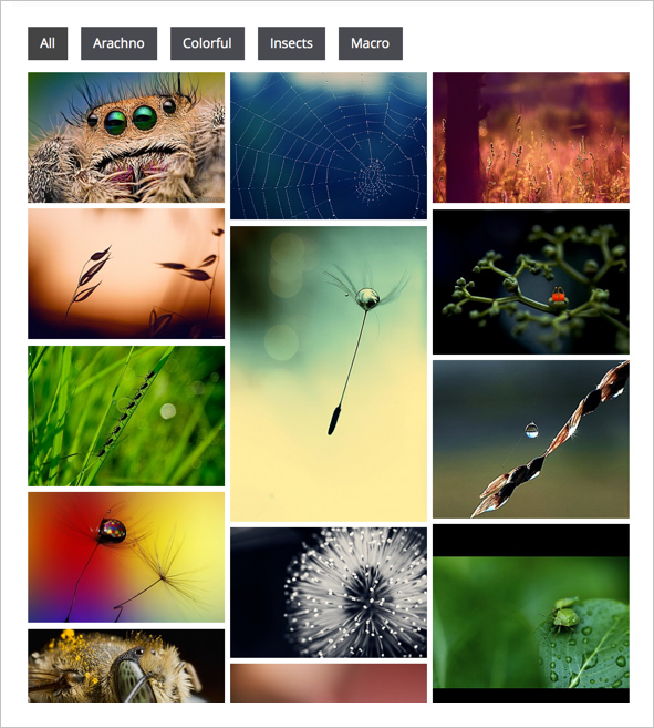 Awesome Gallery - Instagram, Flickr, Facebook galleries on your site. - 2