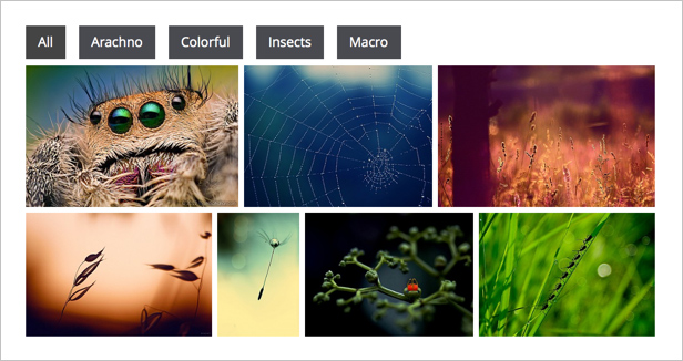 Awesome Gallery - Instagram, Flickr, Facebook galleries on your site. - 1