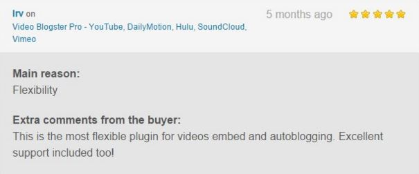 Video Blogster Pro - import YouTube videos to WordPress. Also DailyMotion, SoundCloud, Vimeo, more - 14