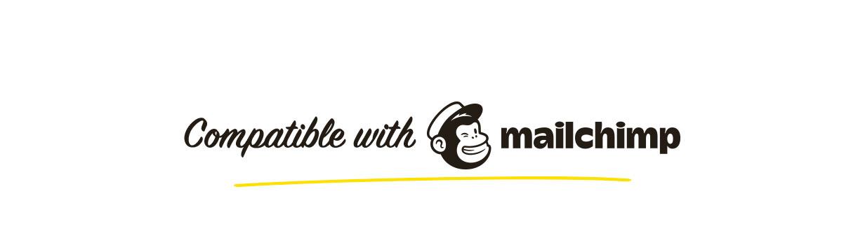 Konte WordPress theme supports MailChimp