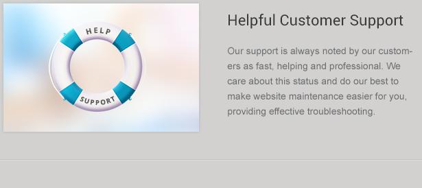 WP Theme Customer Support