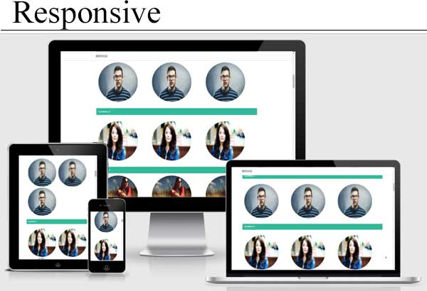 Image Hover Effect Responsive