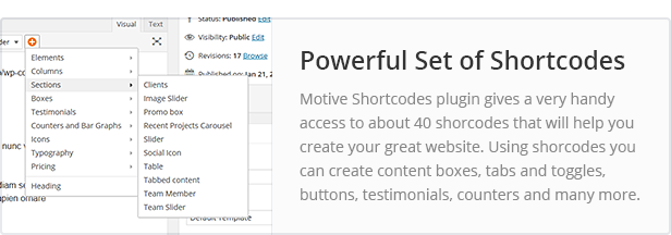 Powerful Set of Shortcodes