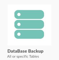 Super Backup & Clone - Migrate for WordPress - 15