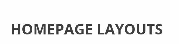 Skywell - MultiPurpose Adobe Muse Template - 17