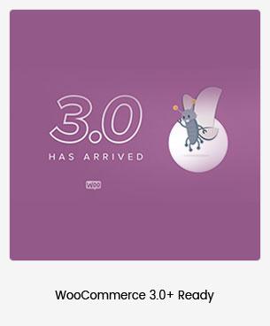 Puca - Optimized Mobile WooCommerce Theme - 101