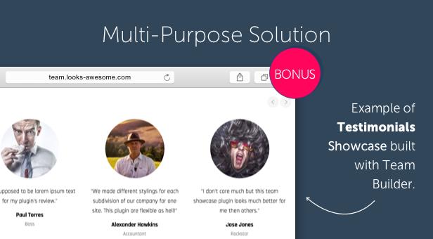 Team Builder — Meet The Team WordPress Plugin - 8