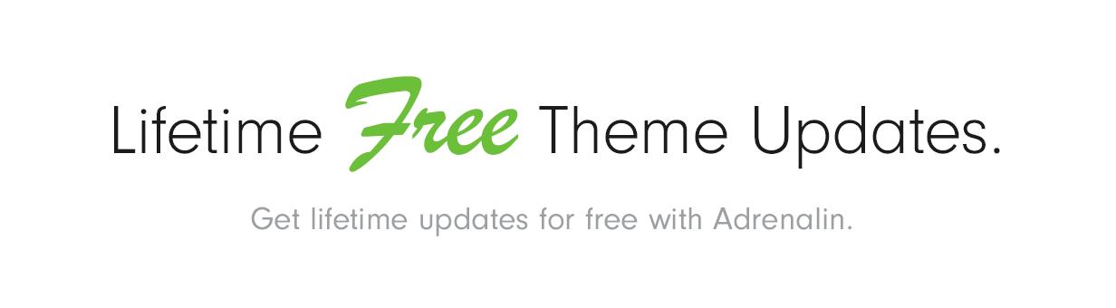Free Updates