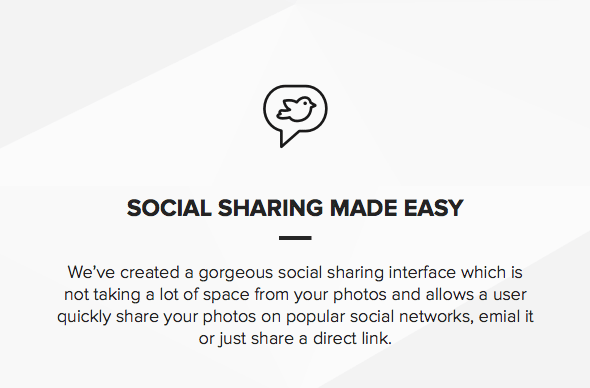Theme for photographers with social sharing