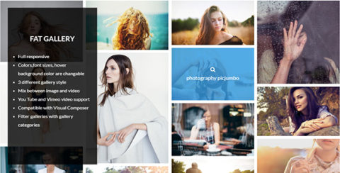 FAT Image Gallery For Wordpress