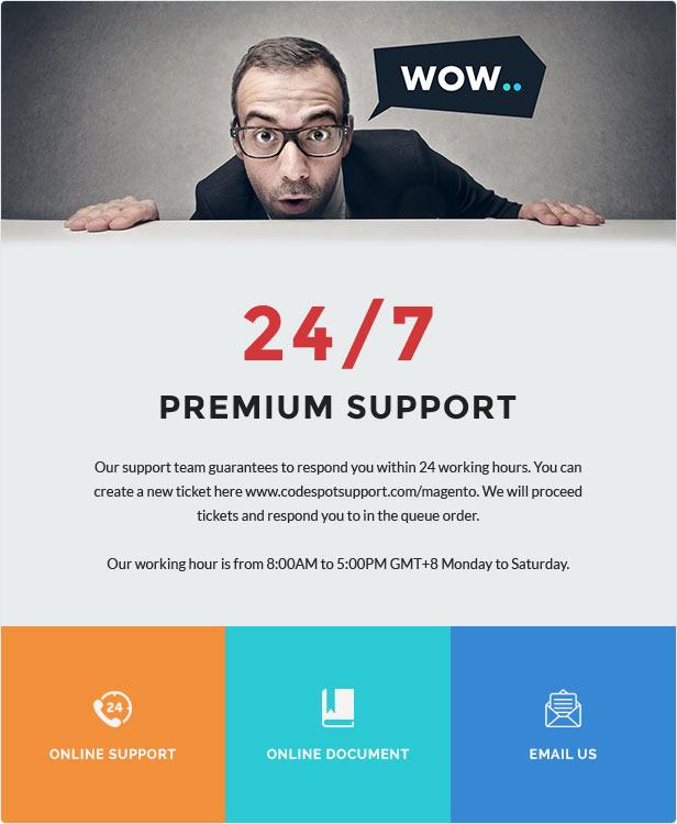 24/7 Premium Support
