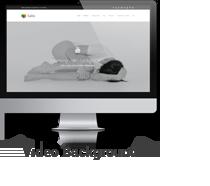Salbii - Responsive Multi-Purpose WordPress Theme - 2