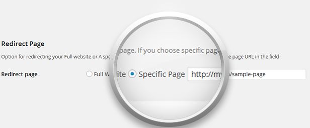 RedirectPlus - WordPress Mobile Redirect Plugin - 3