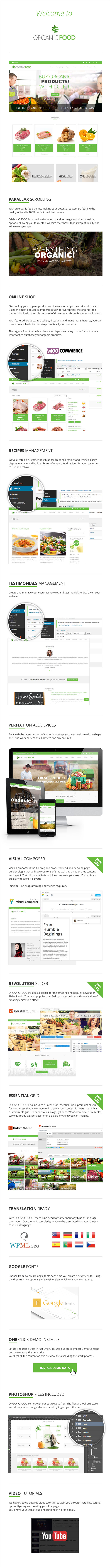 OrganicFood   Responsive WordPress Theme - 8
