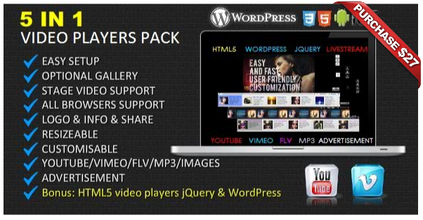 Ultimate Player with YouTube, Vimeo, Ads WP Plugin - 16