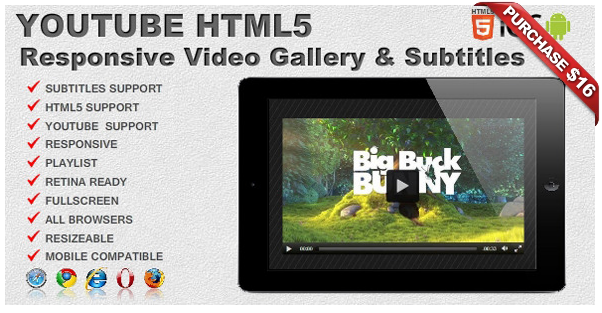Ultimate Player with YouTube, Vimeo, Ads WP Plugin - 11