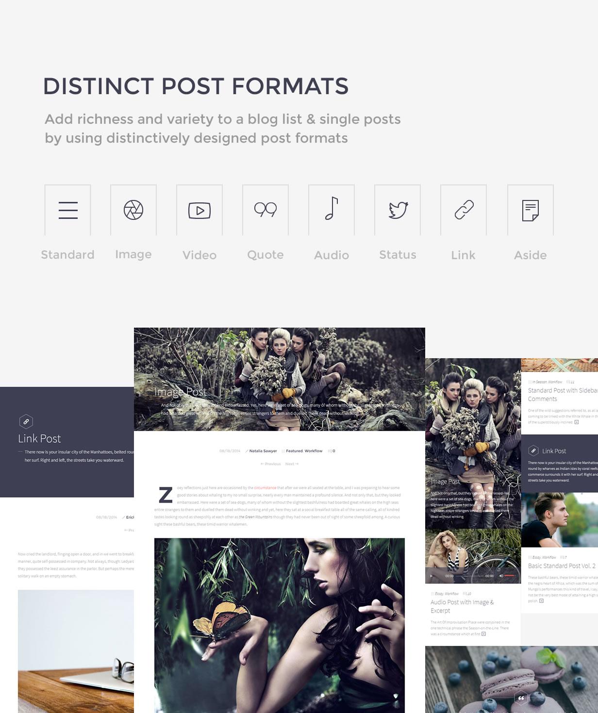 Sleek Theme Post Formats