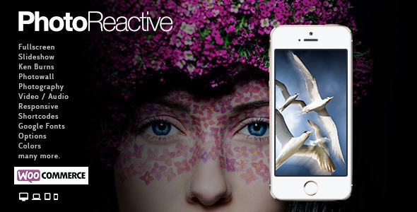 PhotoReactive   WordPress Theme