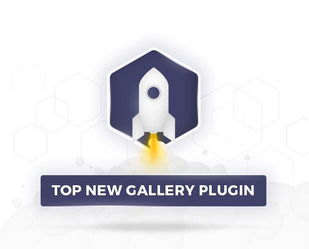 Hybrid Gallery - Top Gallery Plugin