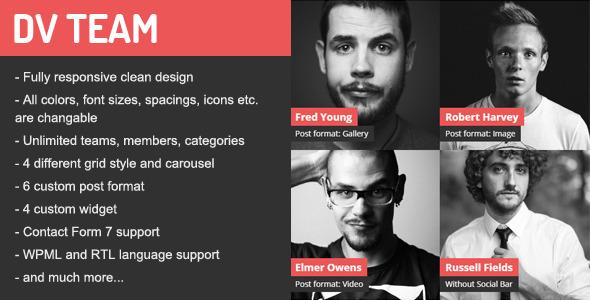 DV Gallery - Responsive WordPress Gallery Plugin - 2