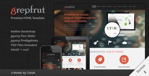 Grepfrut Responsive Software HTML Template