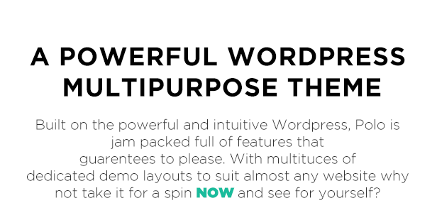 A Powerful WORDPRESS Multipurpose THEME Polo